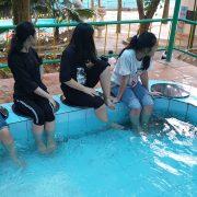 massage-chan-bang-ca (2)